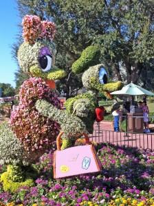 Disney pic 01